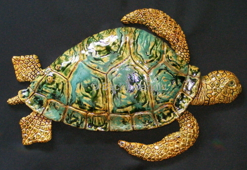 Messenger Turtle