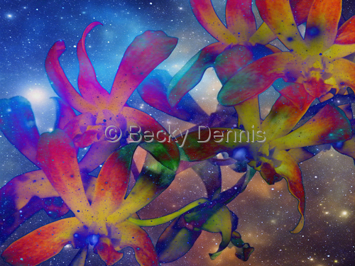 Cosmic Orchid 3