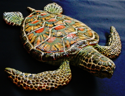 "Large ""green"" sea Turtle"