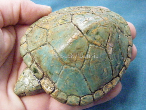 Green Turtle Rattle