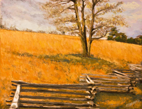 Split Rail Fence, The Blue Ridge