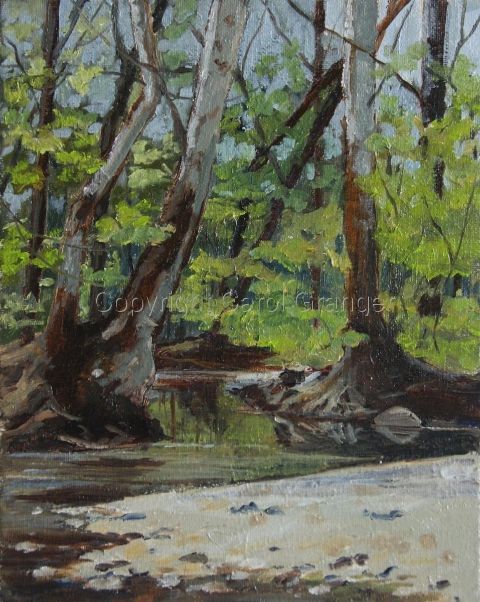 Spring at Adena Creek (large view)