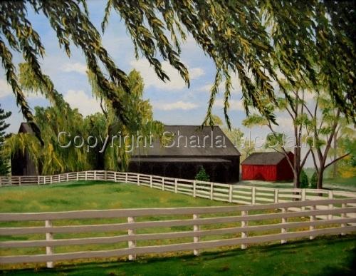 Shaker Horse Barns