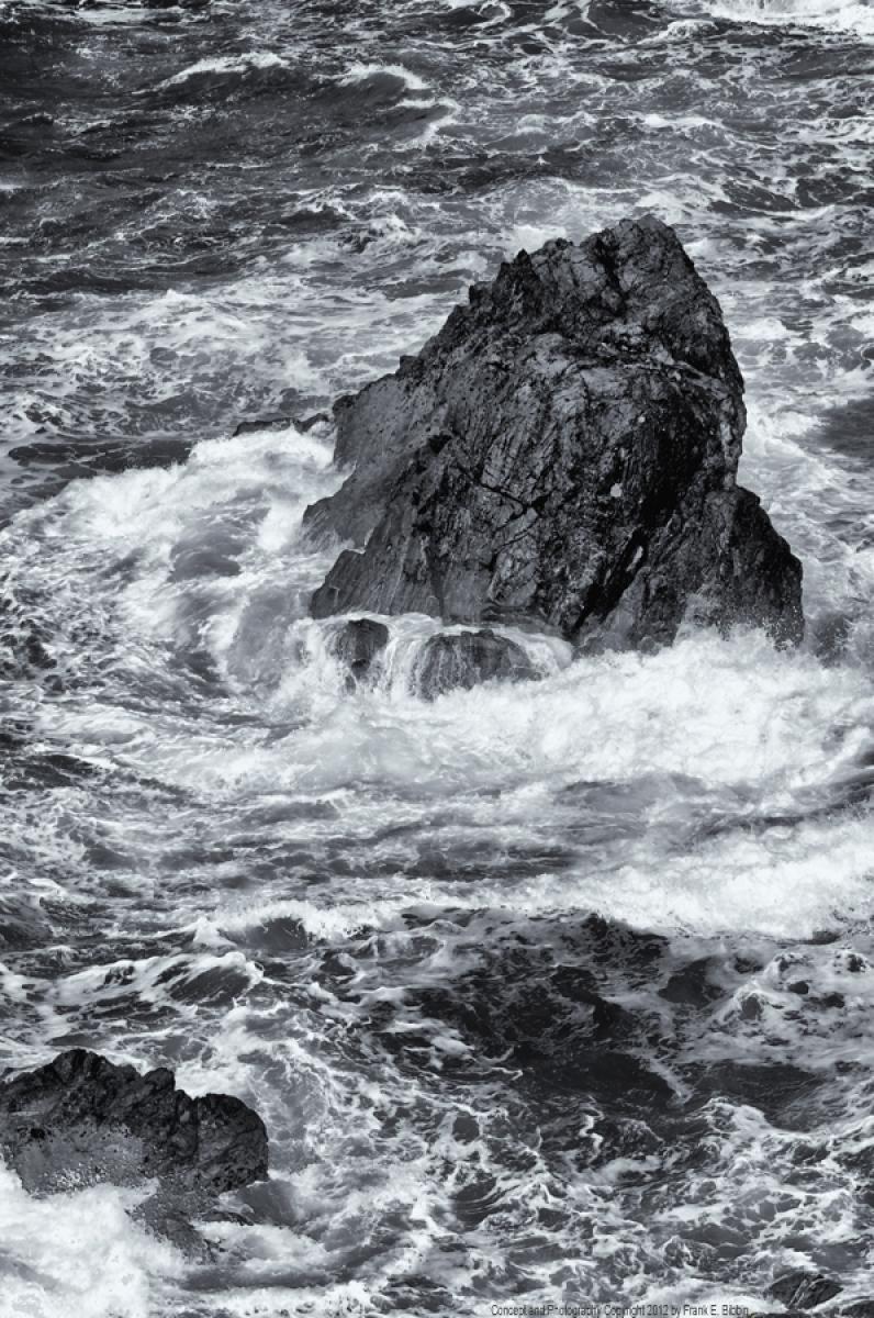 'Savage Coast' by Bibbins (large view)