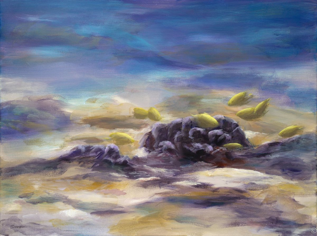 Coral Reef by William Swanson (large view)