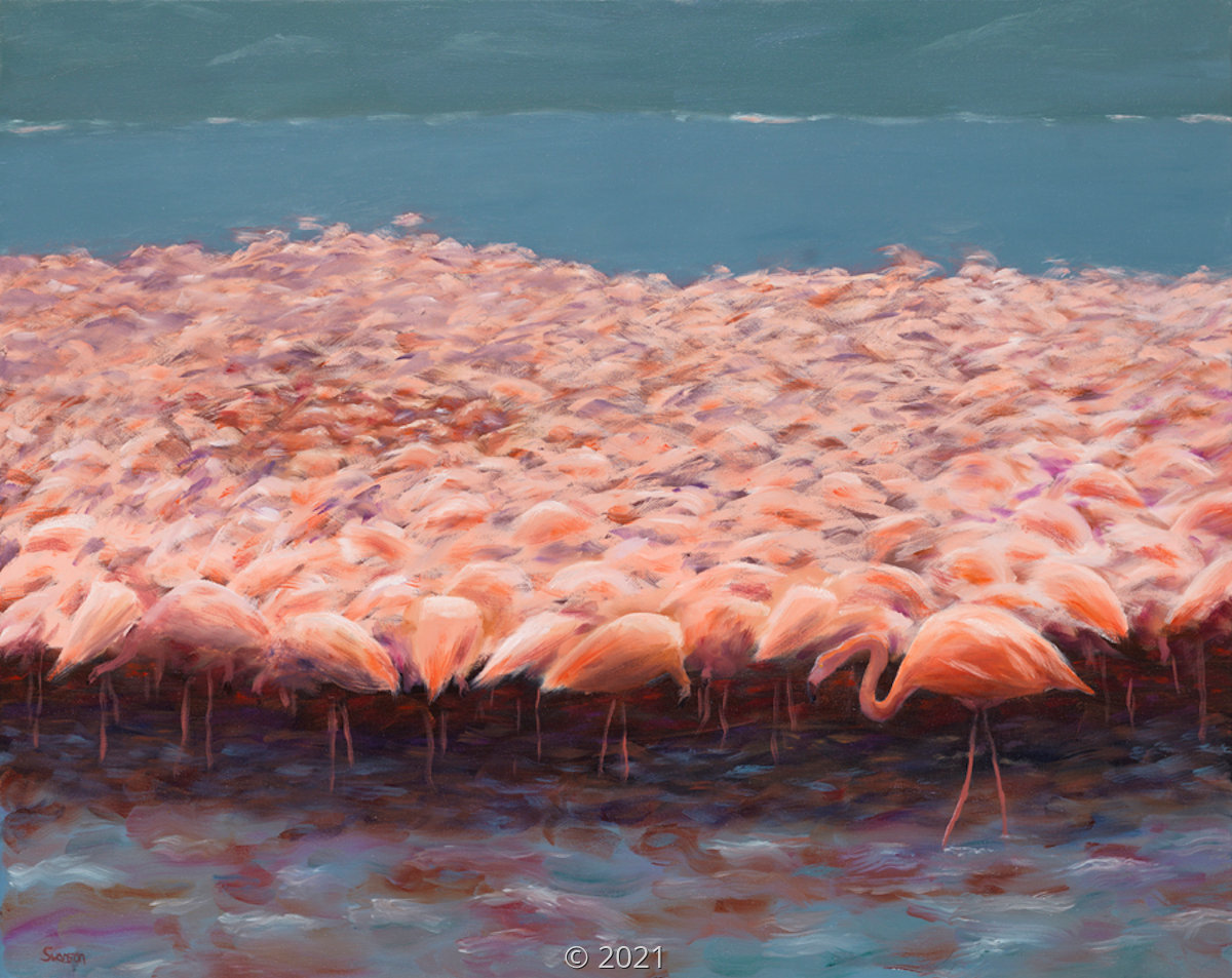 'Flamingos' by Swanson (large view)