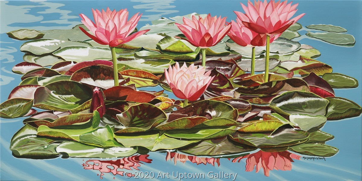 'Waterlily Reflections' by Wurzbach (large view)
