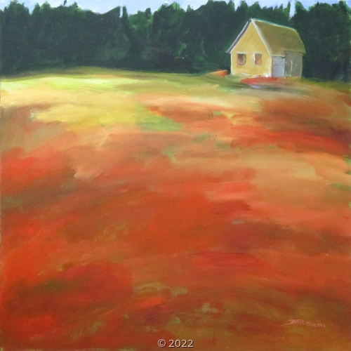 'Orange Field' by Friedli