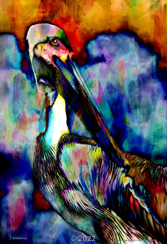 'Avian Abstract #3' by Frank Bibbins
