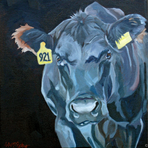 Black Angus Cow by Evelyn McCorristin Peters