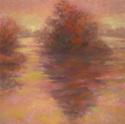 Foggy Morning in Fuchsia (thumbnail)