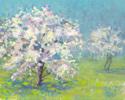 Light Spring Trees (thumbnail)