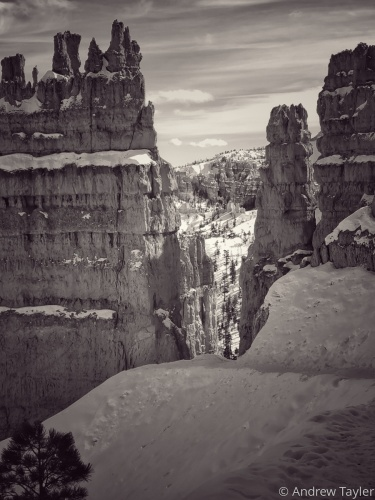 Hoodoos in the snow