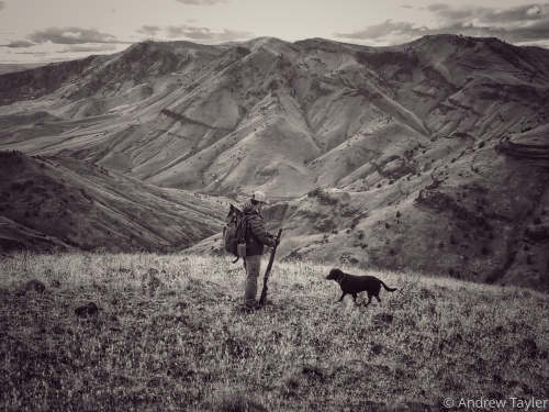 A man and his dog on the hunt