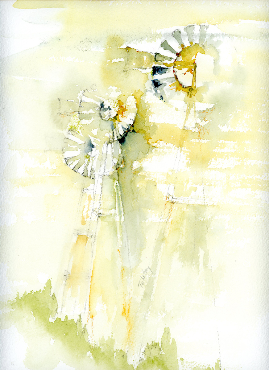 Windmills (large view)