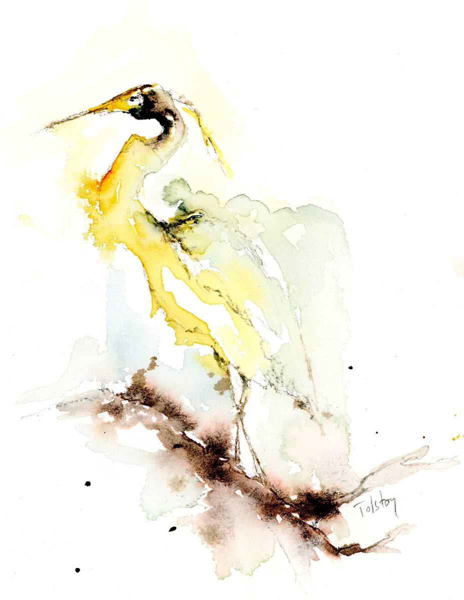 Egret (large view)