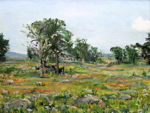 Rocks of Gettysburg