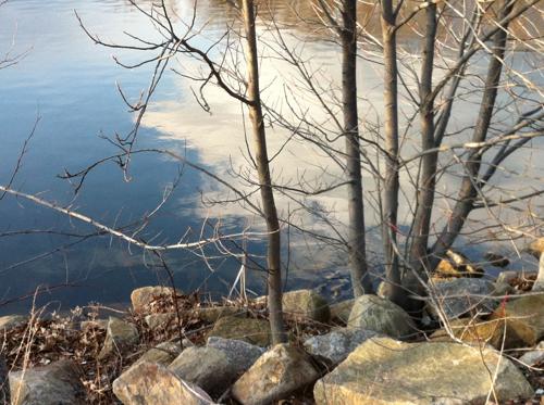 Fall's Pond