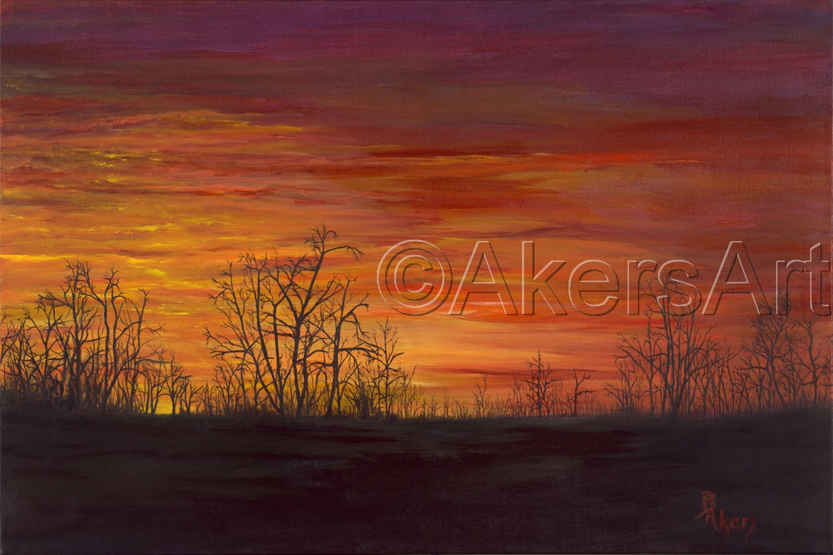 Sky Aflame (large view)