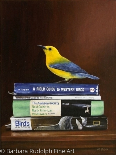 The Bird of the Month Club by Barbara Rudolph Fine Art