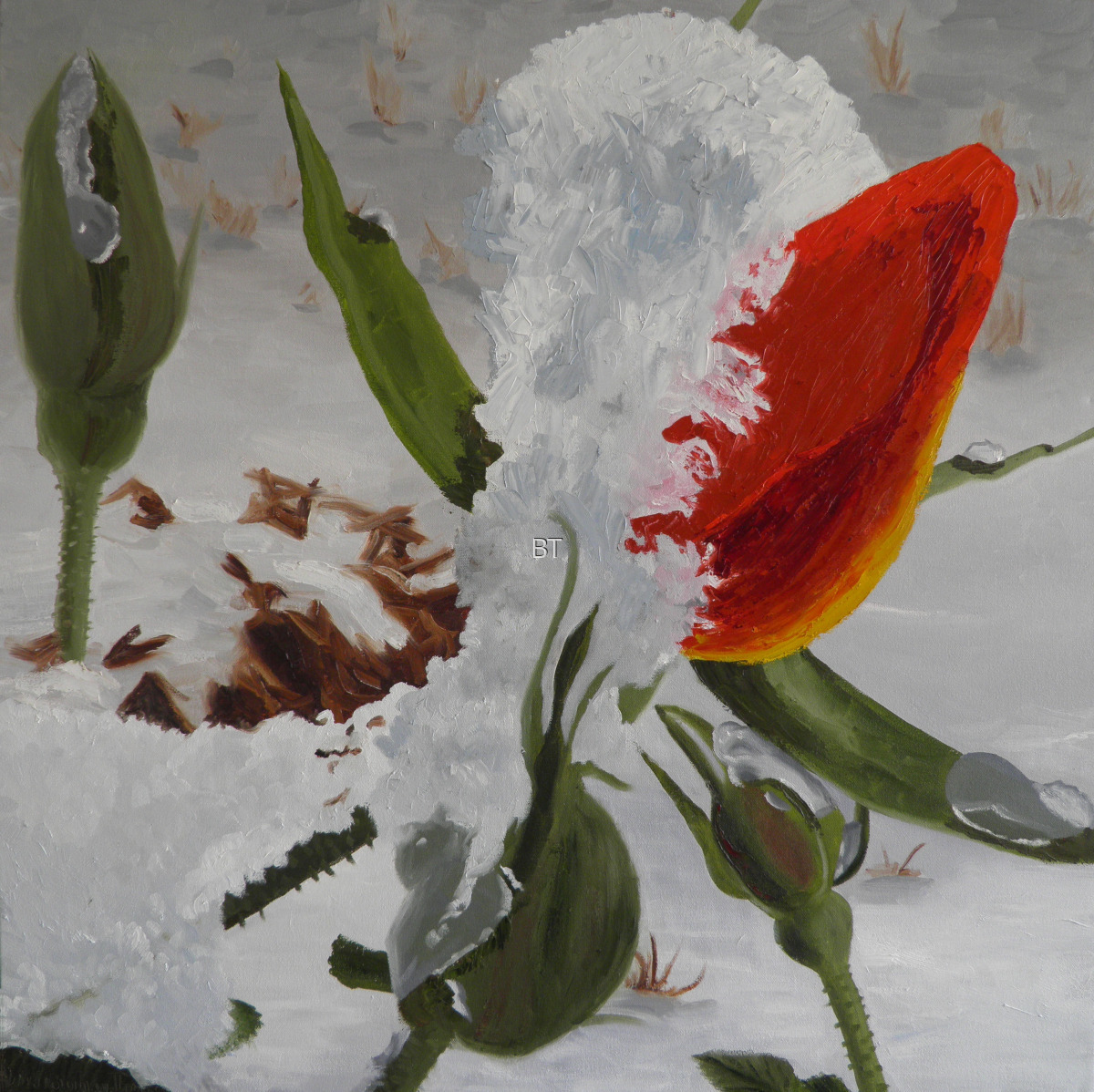 oilon canvas of red rosebud covered in ice during late snow (large view)