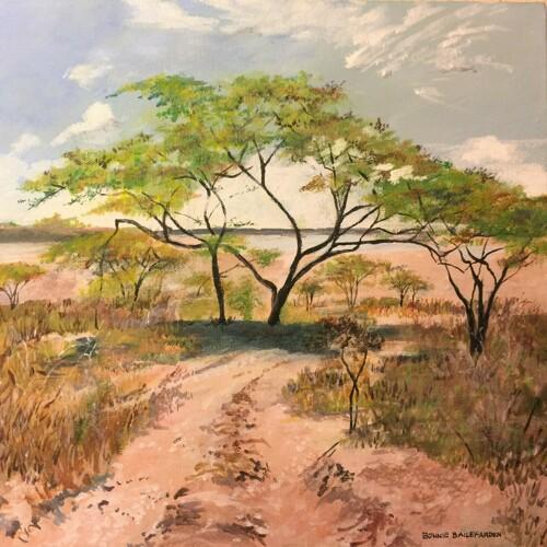 Acacia Refuge