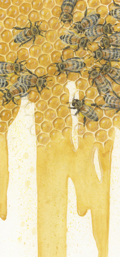 Bees (large view)