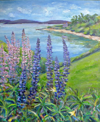 Maine Lupines by Barbara Chase
