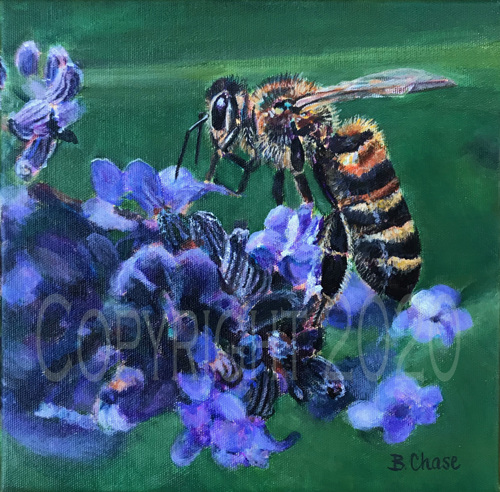 Beauty and the Bee by Barbara Chase