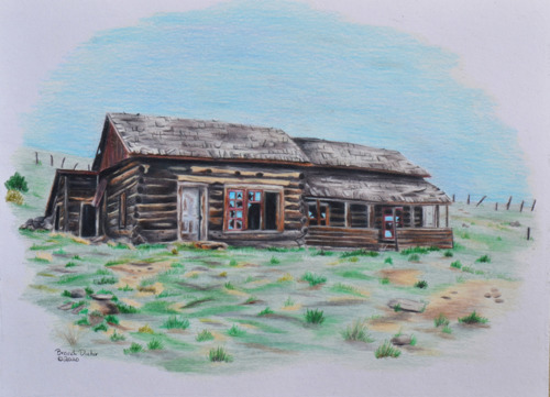 Cabin on the Plains