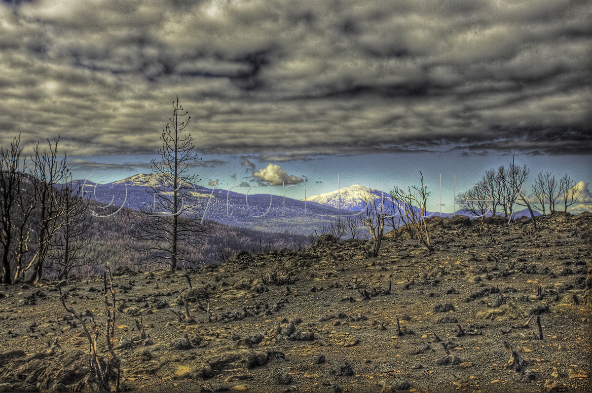 Scorched Earth (large view)