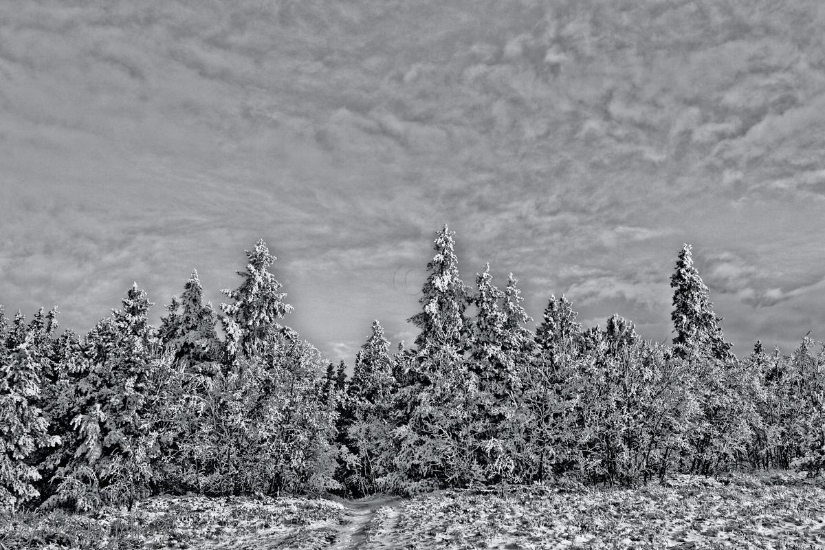 Mount Sherman first snowfall #5b (large view)