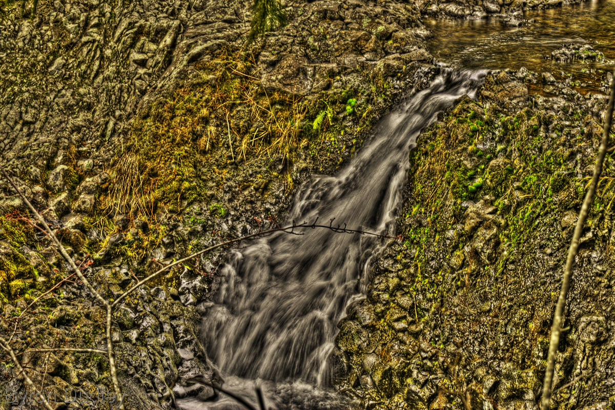 McKenzie River #10a (large view)