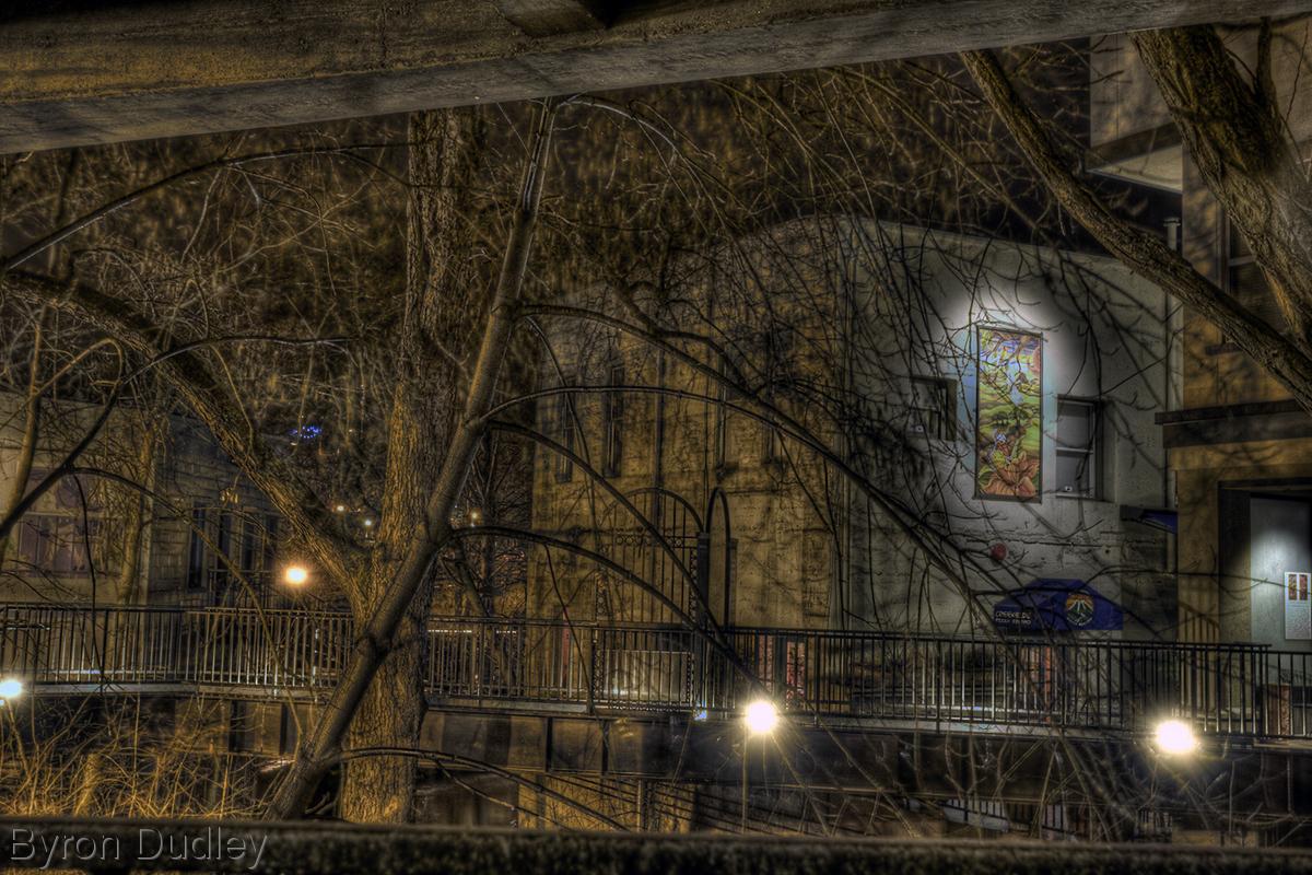 Under Oak Street (large view)