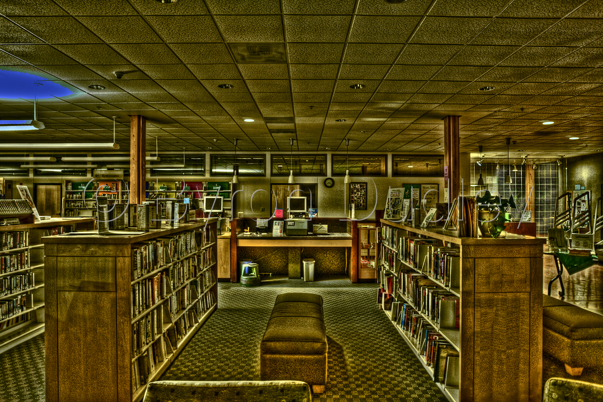 The Library #1 (large view)