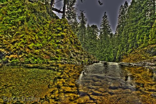 McKenzie River #8 (large view)