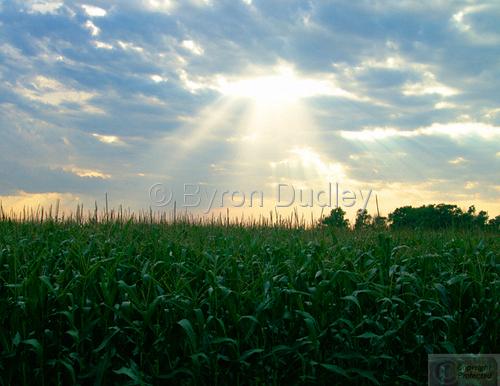 Nebraska Sun Splash (large view)
