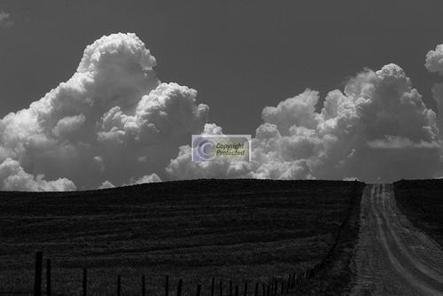#17 Dirt Road Meadows n Clouds (large view)