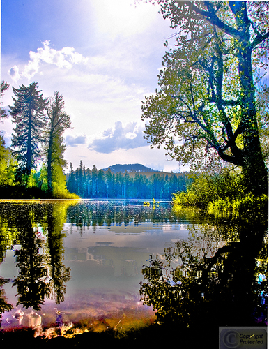 Mt Washington Wilderness #2 (large view)