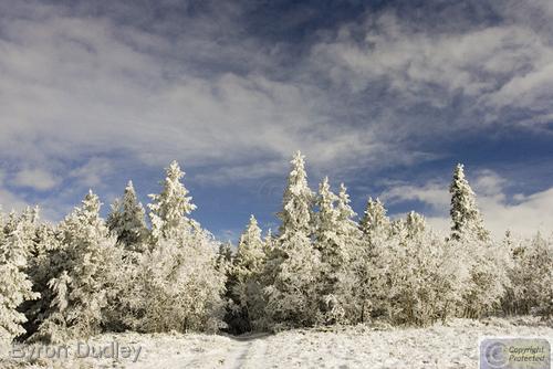 Mount Sherman first snowfall #5 (large view)