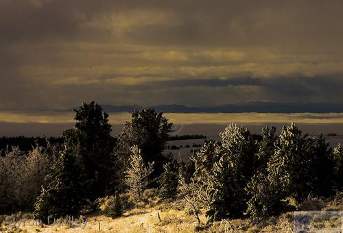 Mt Sherman #7 (large view)