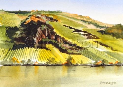 Rhine River Viniards