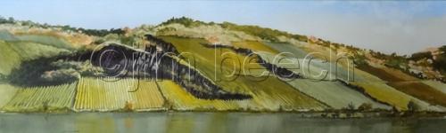 Viniards On The Rhine
