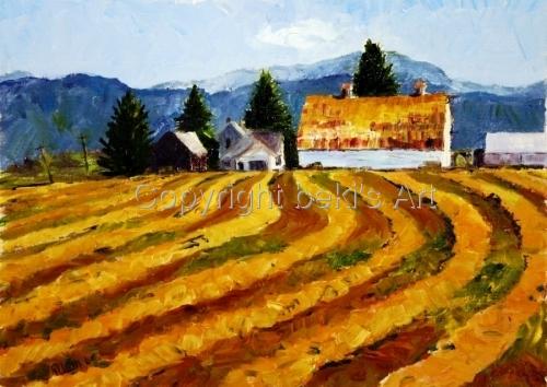 Hay Rows, near Bozeman