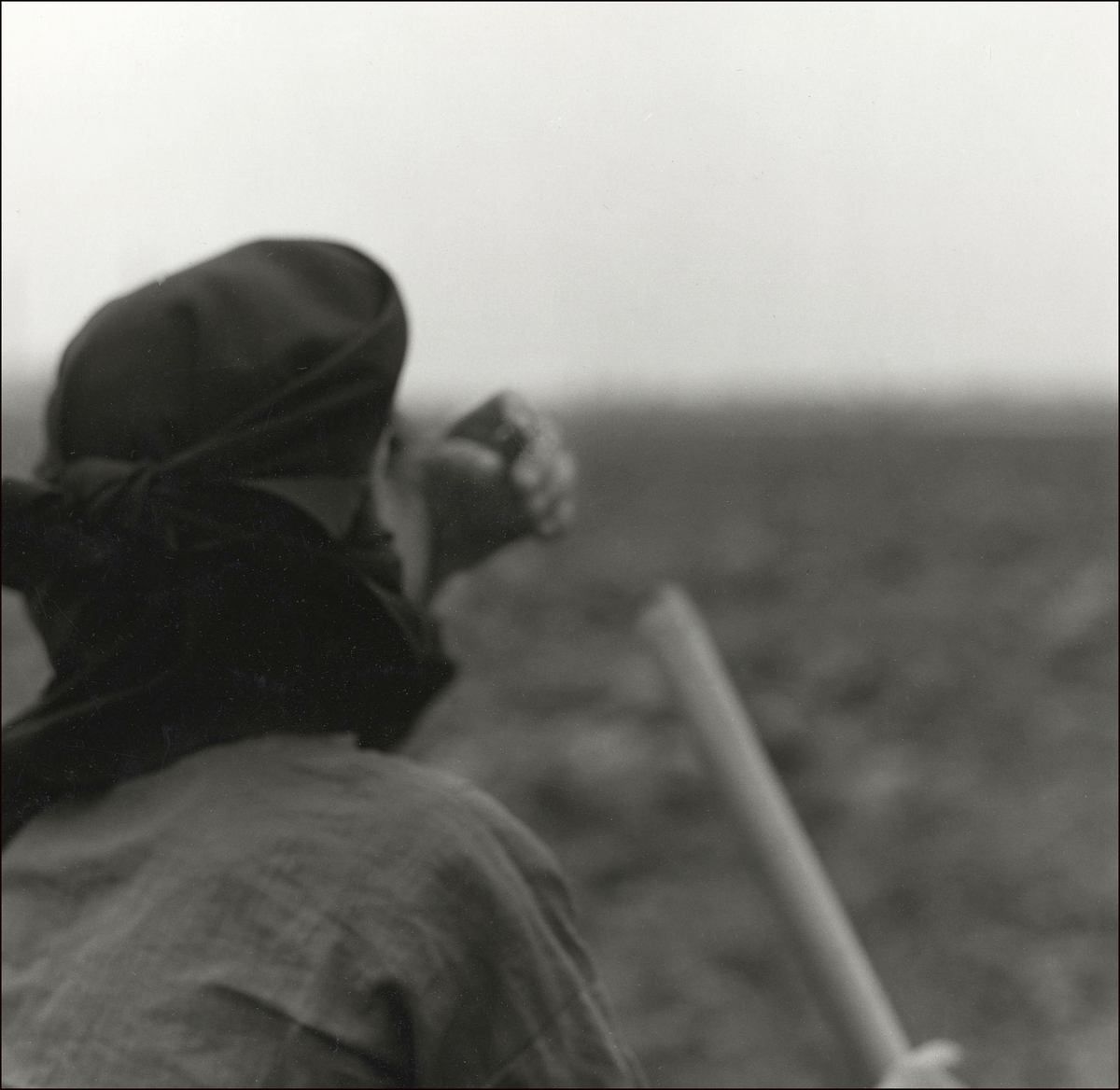 Woman Working Field, Vietnam, 1990 (large view)