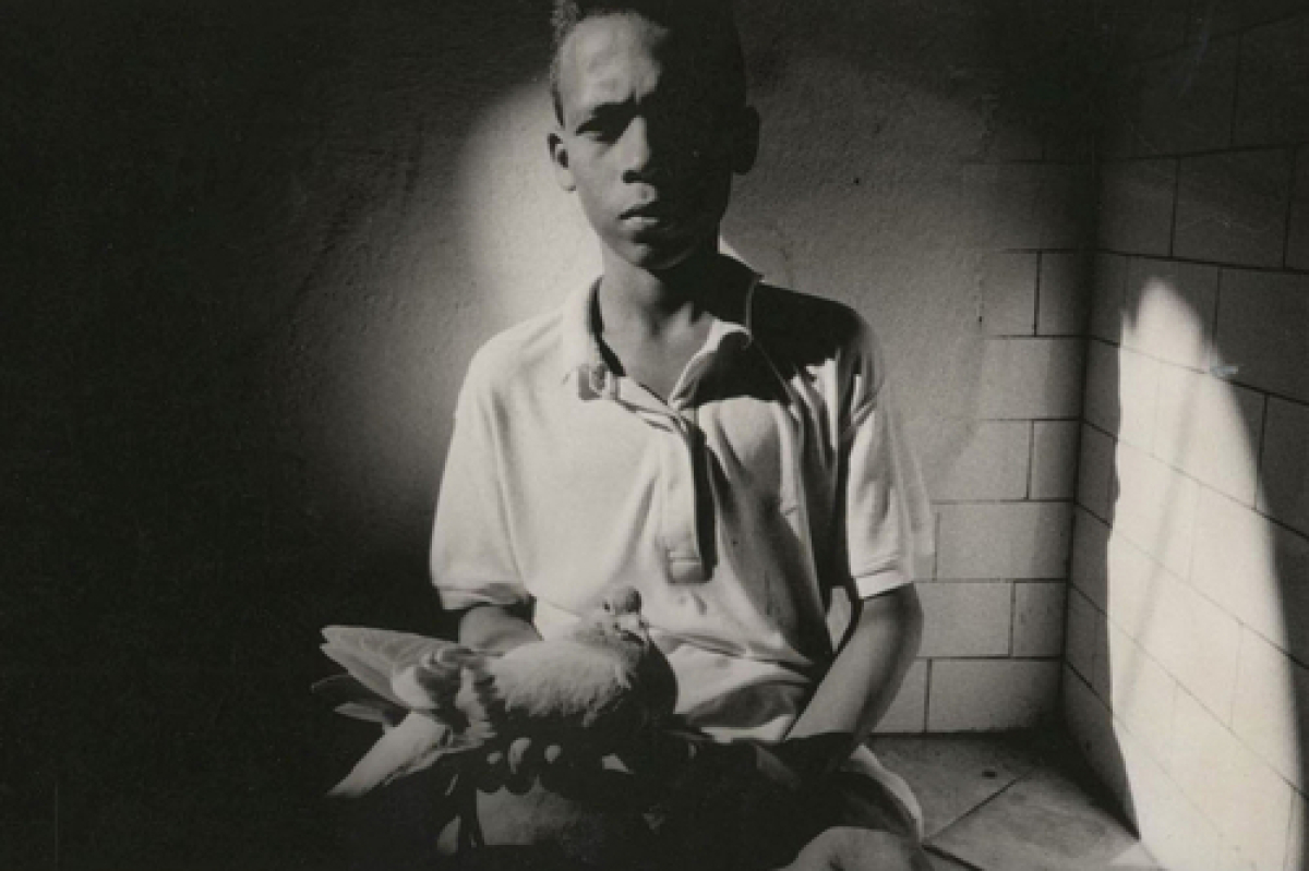 Boy In Stairwell With Pet Pigeon, Cuba (large view)