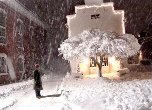 Man, Snow, Tree, Shepherdstown Library, WV, 2011 (large view)