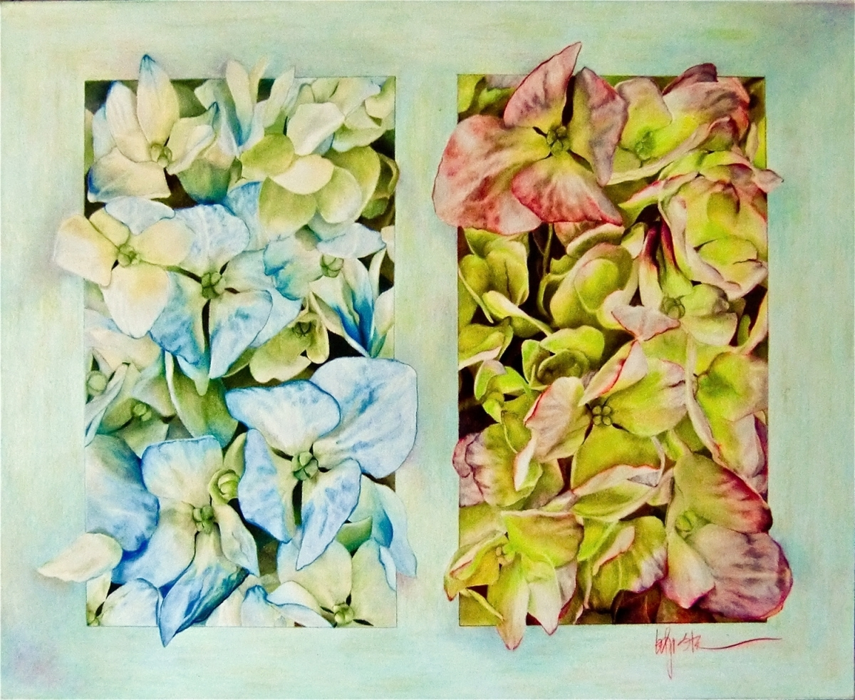 Hydrangeas (large view)