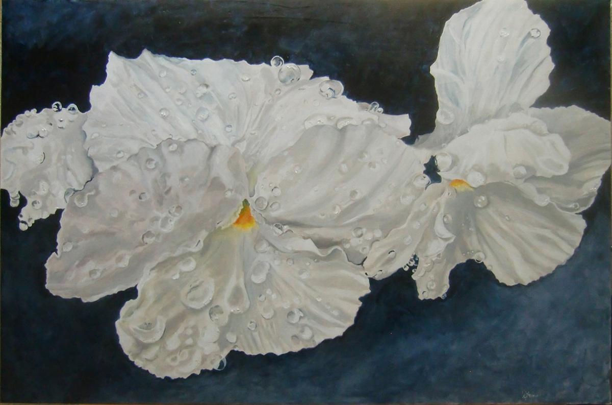 White Pansies (large view)