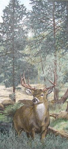 """""""Flatrock Buck"""""""